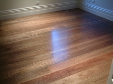 1. Stained Spotted Gum Brighton